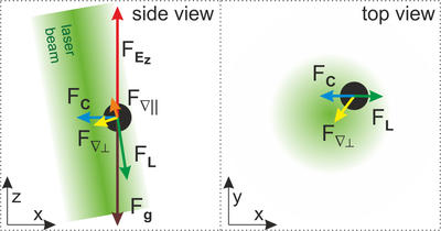 Forces on particles in an optical tweezer